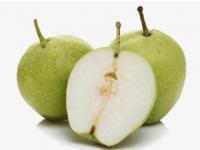 林苗圃早酥梨